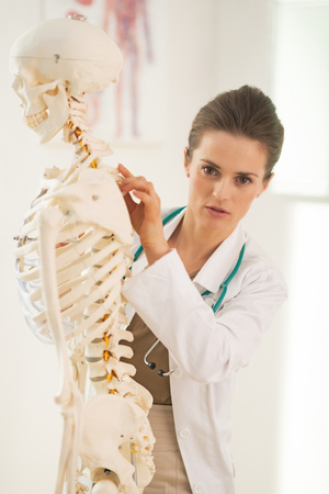 anatomical model: Doctor woman pointing on human skeleton anatomical model Stock Photo