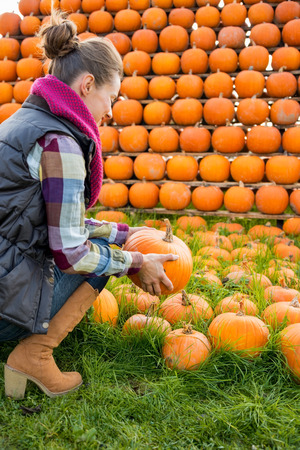 Young woman holding pumpkin. rear view photo