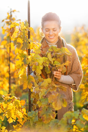 Happy young woman standing in autumn vineyard and looking on branch photo