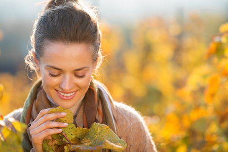 grape vines: Portrait of smiling young brunette woman winegrower looking on grape vines in vineyard outdoors in autumn. Small business concept Stock Photo
