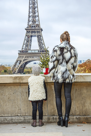 The Party Season in Paris. Seen from behind smiling modern mother and child with Christmas tree against Eiffel tower in Paris, France sightseeing