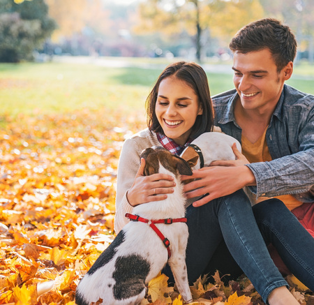 stroll: Portrait of happy young couple sitting outdoors in autumn park and playing with dogs
