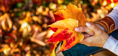 Closeup on woman holding autumn leaf