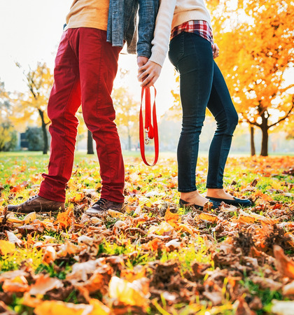 Closeup on young couple holding leash together in autumn park Stock Photo