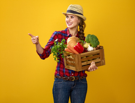 Healthy food to your table. Portrait of smiling young woman grower in checkered shirt isolated on yellow with box of fresh vegetables pointing at something