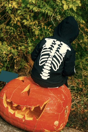 Trick or Treat. child wearing skeleton costume on Halloween outdoors sitting on a huge pumpkin Jack O'Lantern