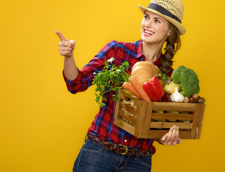 Healthy food to your table. smiling young woman grower in checkered shirt isolated on yellow with box of fresh vegetables pointing at something
