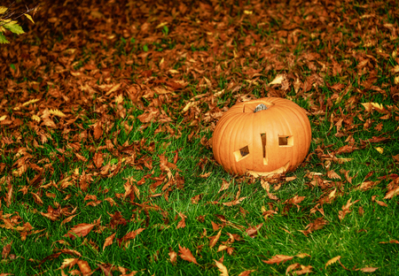 Trick or Treat. Closeup on pumpkin Jack O'Lantern on grass in the park Halloween Stock Photo
