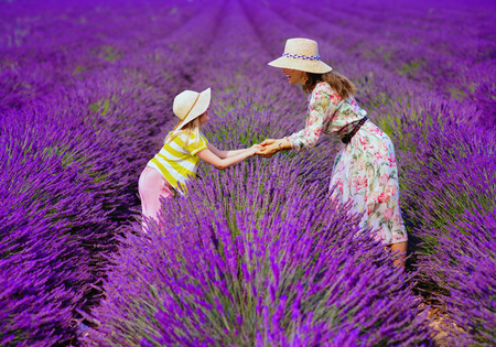 modern mother and daughter in lavender field in Provence, France stand holding hands. relaxed and calming looming lavender field in July or August is perfect place for family tourists Banco de Imagens