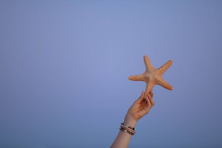 Closeup on starfish against sky at sunset