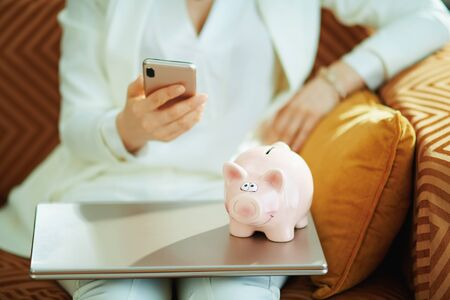 Closeup on woman with laptop and piggy bank with smartphone using applications in the living room in sunny day.