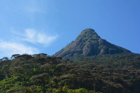 Beautiful morning view of the holy Sri Pada Mountain (Adams Peak), Sri Lanka