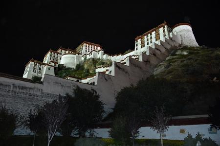 Night view of buddhist Potala Palace in Lhasa. Tibet Autonomous Region, China