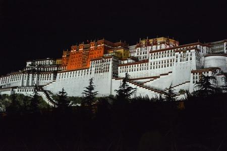 Illuminated buddhist Potala Palace at night. Lhasa, Tibet.