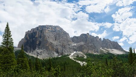 Panorama of Sella massif with fir trees on the foreground. Italian Alps, South Tyrol