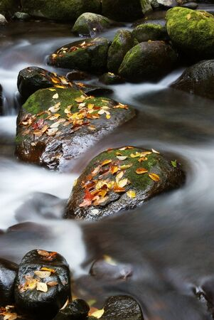 Stone,fallen leaves and stream in autumn photo