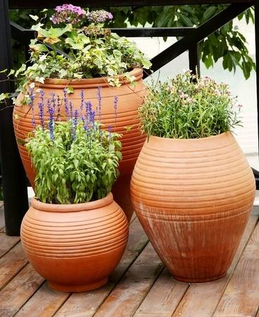 花のテラス