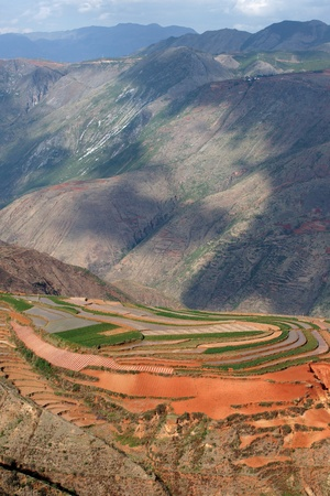 kunming: red farmland landscape,dongchuan,china