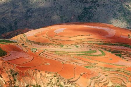 赤い農地、東川、雲南省、中国 写真素材 - 11513668