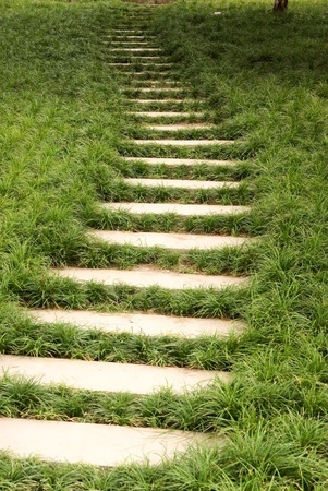 Steps with grass lawn Stock Photo