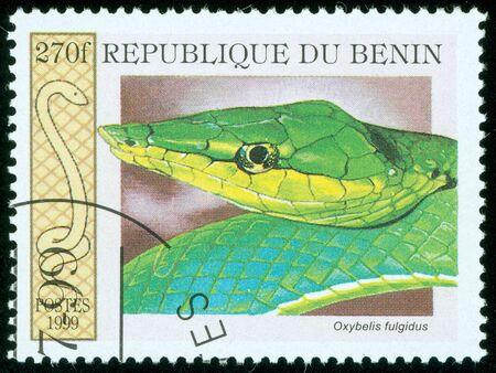 BENIN - CIRCA 1999  A stamp printed in Benin showing a snake, circa 1999