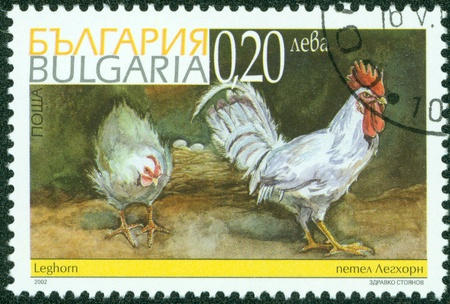BULGARIA - CIRCA 2002  A Stamp printed in BULGARIA and shows image of rooster and hen , circa 2002