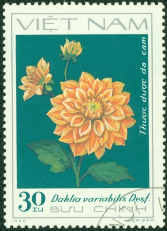 VIETNAM - CIRCA 1982  A stamp printed in Vietnam shows orange dahlia, series devoted to dahlias, circa 1982