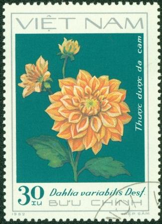 VIETNAM - CIRCA 1982  A stamp printed in Vietnam shows orange dahlia, series devoted to dahlias, circa 1982