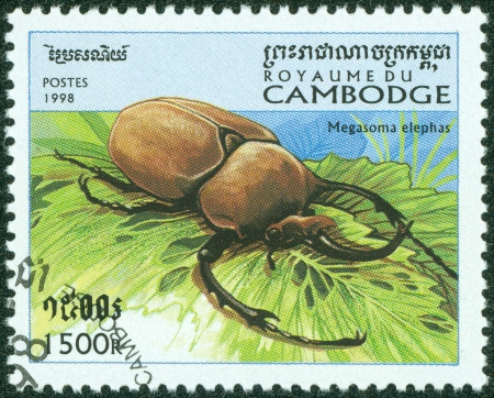 CAMBODIA - CIRCA 1998  stamp printed by Cambodia, shows Bug - a stag beetle  magasoma elephas , series beetle,, circa 1998