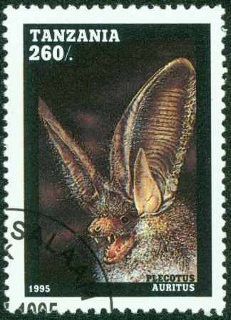 TANZANIA - CIRCA 1995  A stamp printed in Tanzania, shows bat Plecotus auritus, series, circa 1995