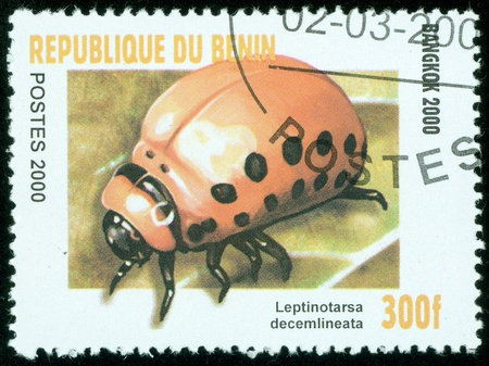 BENIN - CIRCA 2000  stamp printed by BENIN , shows Lady beetles, circa 2000  Stock Photo - 13838095