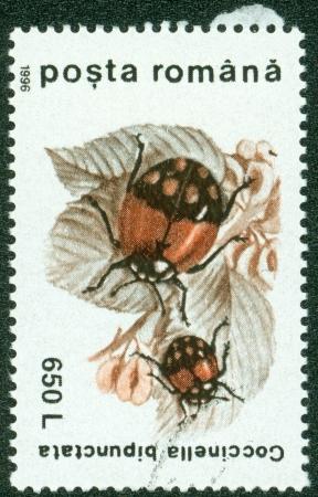 coccinella: ROMANIA - CIRCA 1996  stamp printed by Romania, shows Coccinella bipunctata, circa 1996 Stock Photo