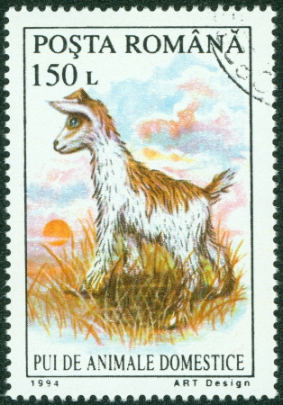 ROMANIA - CIRCA 1994  stamp printed by Romania, shows lamb, circa 1994 photo
