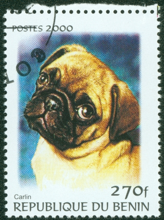 BENIN - CIRCA 2000  A stamp printed in BENIN,shows a dog, circa 2000 Stock Photo - 13858634