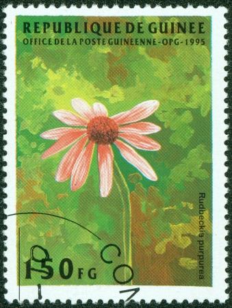 guinee: GUINEE- CIRCA 1995  A stamp printed in GUINEE shows painting of daisy, circa 1995