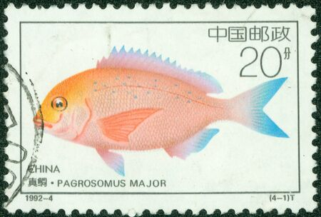 CHINA - CIRCA 1992  A stamp printed in CHINA shows a fish pagrosomus major , circa 1992 Stock Photo - 13858572