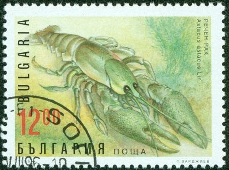 BULGARIA CIRCA 1996 A stamp printed in BULGARIA shows Shrimp, circa 1996 photo