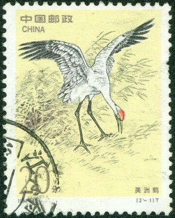 chinese postage stamp: CHINA - CIRCA 1994  stamp printed by CHINA, shows bird whooping crane , circa 1994  Stock Photo