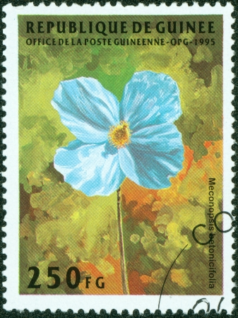 guinee: GUINEE- CIRCA 1995  A stamp printed in GUINEE shows painting of flower, circa 1995 Stock Photo