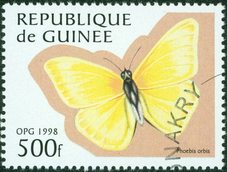 GUINEE - CIRCA 1998  stamp printed by GUINEE, shows butterfly, circa 1998  photo