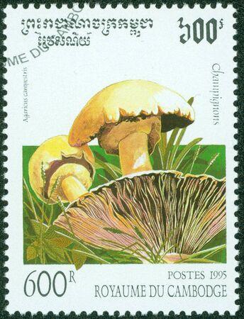 gills: CAMBODIA - CIRCA 1995  A stamp printed in Cambodia shows mushroom, circa 1995  Stock Photo