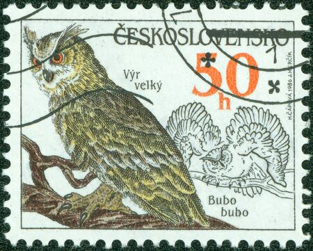 CZECHOSLOVAKIA - CIRCA 1986  A stamp printed in Czechoslovakia, shows Eurasian Eagle-Owl  bubo bubo   circa 1986 photo