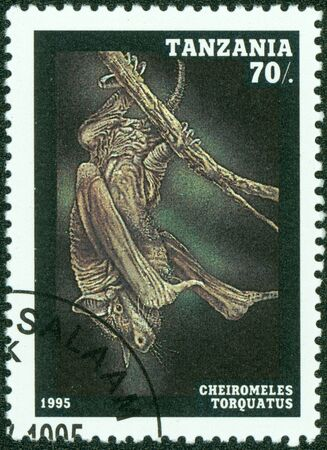 TANZANIA - CIRCA 1995  A stamp printed in Tanzania, shows bat Plecotus auritus, series, circa 1995 photo