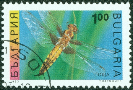 BULGARIA-CIRCA 1993  A stamp printed in the Bulgaria, shows the insect, Four-spotted Chaser, circa 1993 Stock Photo - 13975938