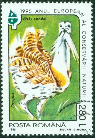ROMANIA - CIRCA 1995  A stamp printed in ROMANIA showing otis tarda, circa 1995 Stok Fotoğraf