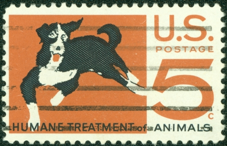 UNITED STATES OF AMERICA - CIRCA 1966  A stamp printed in the United States of America shows Mongrel dog, humane treatment of all animals, circa 1966