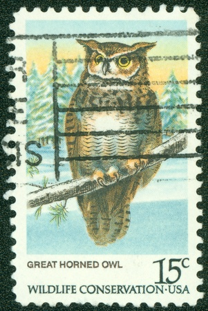 USA - CIRCA 1978   A stamp printed in the USA shows Great Horned Owl, Wildlife Conservation, circa 1978 photo