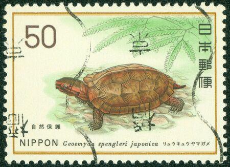 日本 - 1977 A 切手が日本で印刷されたおよそ 1977 年ごろの Geoemyda spengleri スギを示しています 写真素材