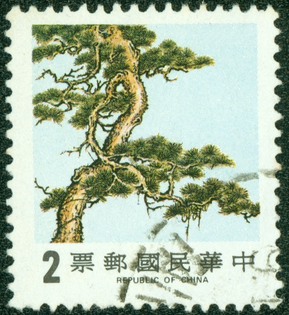 TAIWAN - CIRCA 1988  A stamp printed in Taiwan  Republic of China  shows Pine Tree one of three symbols of winter time, circa 1988 photo