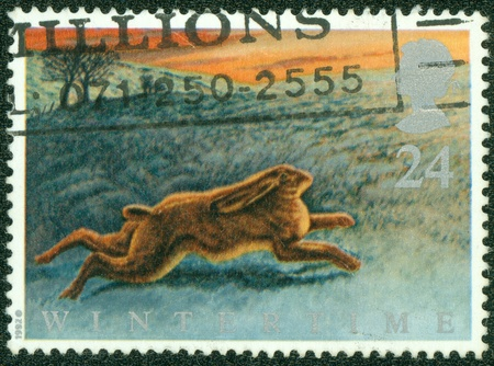 UNITED KINGDOM - CIRCA 1992  A British Used Postage Stamp celebrating British Wildlife, showing a Brown Hare, circa 1992